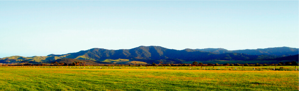 ニュージーランドの農場