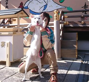 北海道犬の銀ちゃん