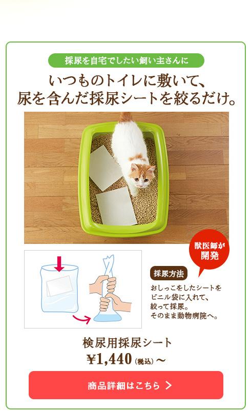 いつものトイレに敷いて、 尿を含んだ採尿シートを絞るだけ。
