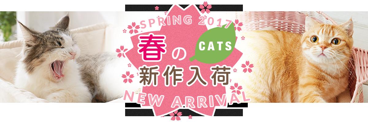 春の新作入荷犬編