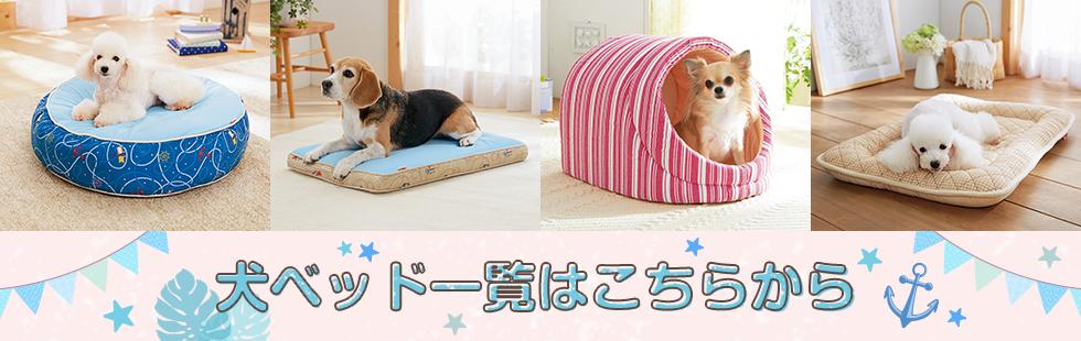 犬ベッド一覧はこちらから
