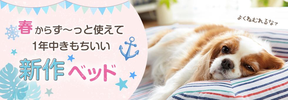 【犬ベッド特集】春からず~っと使えて一年中きもちいい新作ベッド