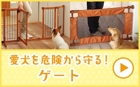 愛犬を危険から守るゲート