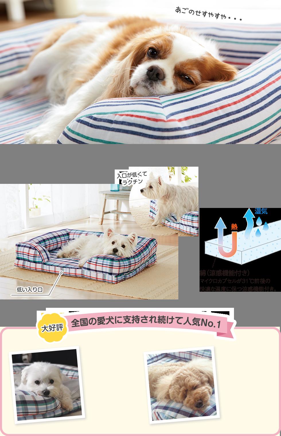 コットン100%の涼感ベッドで、スヤスヤ快適。