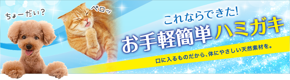 愛犬・愛猫の歯磨き特集 ~ペットの簡単デンタルケア~