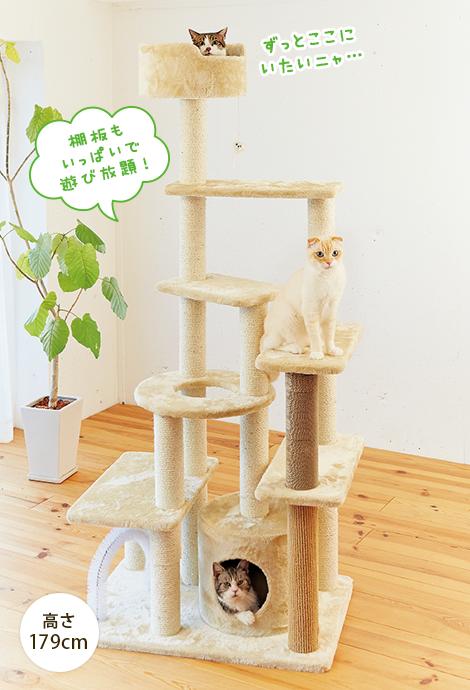 いっぱい遊べるハイキャットタワー