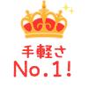 手軽さ No.1!