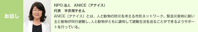 NPO法人 ANICE(アナイス) 代表 平井潤子さん