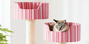 VOL.1 気ままニャ猫もハマる!?猫ごころをくすぐる遊び場特集