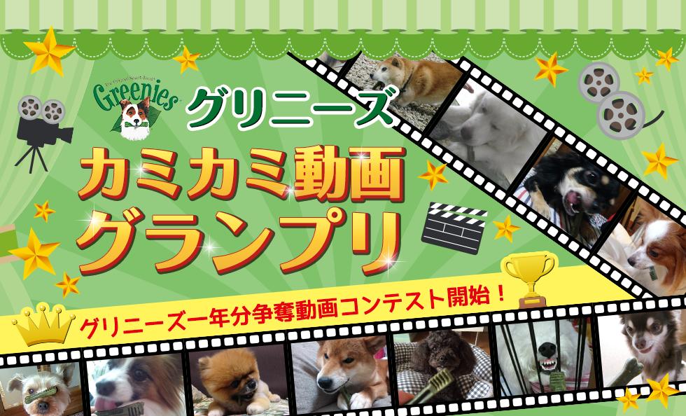 グリニーズ カミカミ動画グランプリ