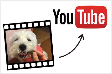 YouTubeに動画をアップ
