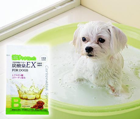 炭酸泉EX (炭酸パウダー 入浴剤)