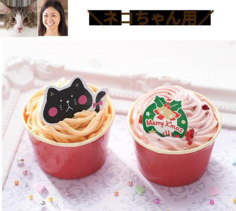 コミフ ネコちゃんクリスマスケーキ
