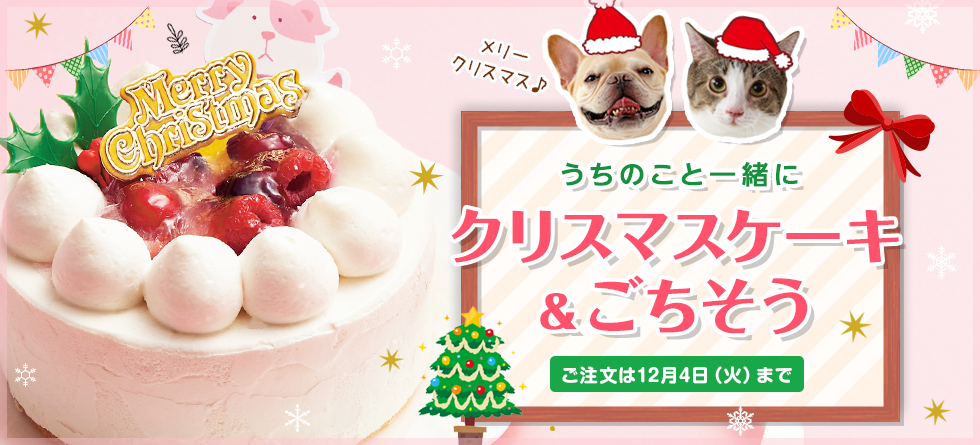 クリスマスケーキ&ごちそう