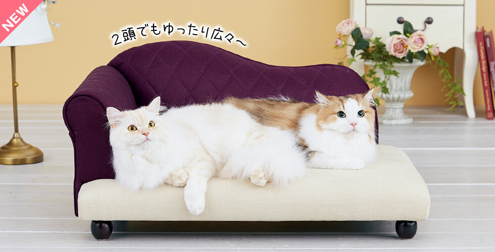 高級ソファのような本物の寝心地。