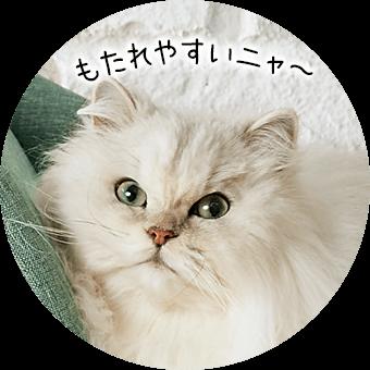猫さま用の手すりにゴロ〜ン♪