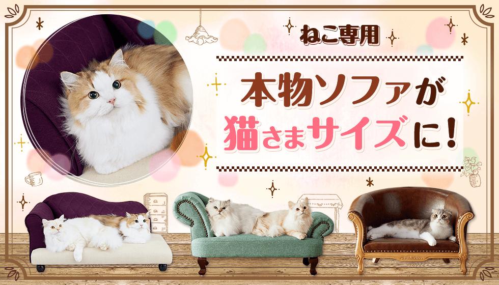 ねこ専用 本物のソファが猫さまサイズに!