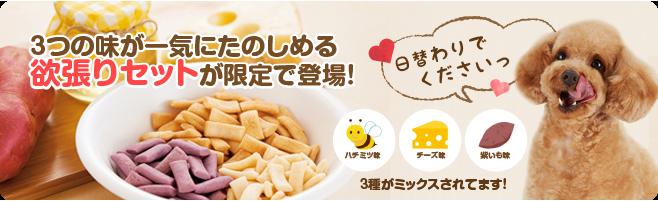 乳酸菌お米ビスケット 3種セット