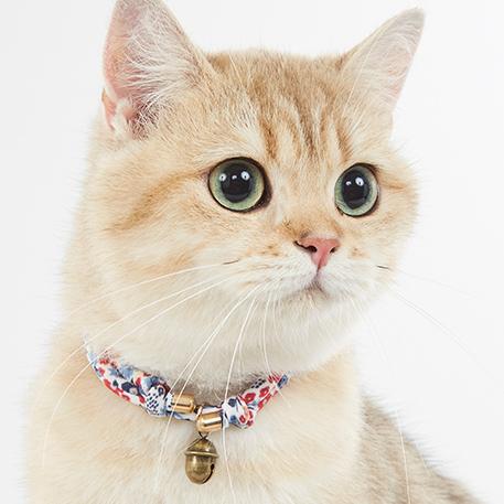 どんぐり猫首輪