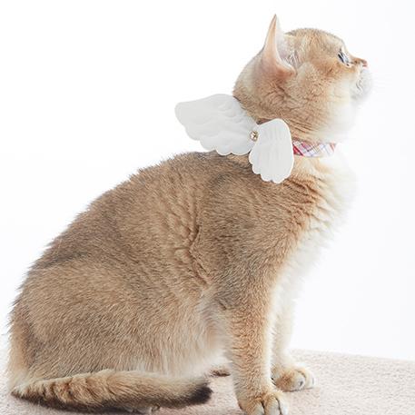 エンゼルカラー猫首輪