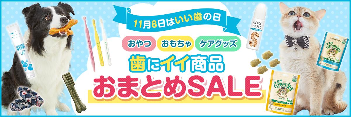 【いい歯の日記念】歯にイイ商品・おまとめSALE!