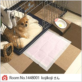 Room No.1448001 kojikojiさん