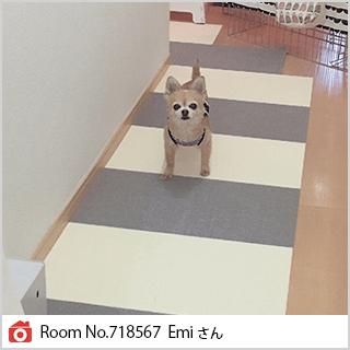 Room No.718567 Emiさん