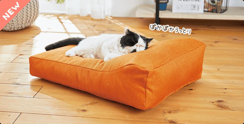 人用寝具のクオリティで作られた贅沢もっちりカーブ。