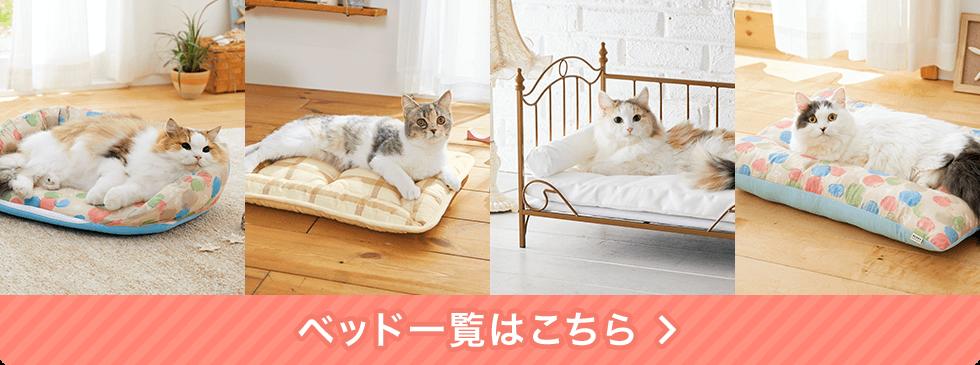 他にも!愛猫の幸せな寝顔が見られるベッド集合