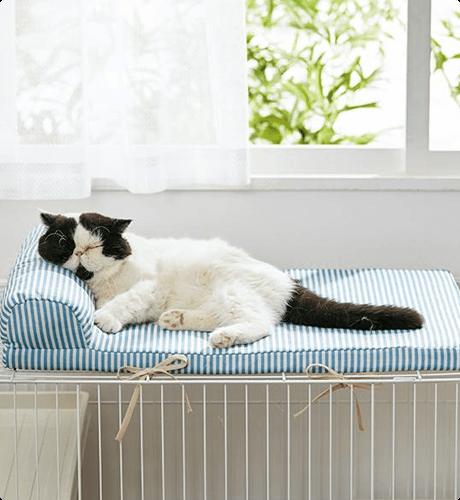 ケージの上に固定できるふかふかベッドでぐっすり。