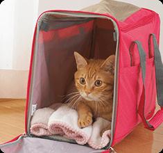 愛猫や飼い主さんのニオイのついたタオルを入れると落ち着きやすい♪