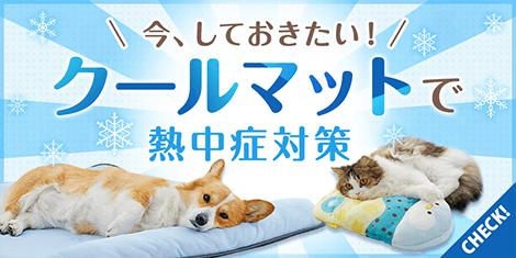 愛犬・愛猫用おすすめクールマット特集