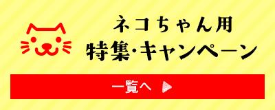ネコちゃん用特集・キャンペーン