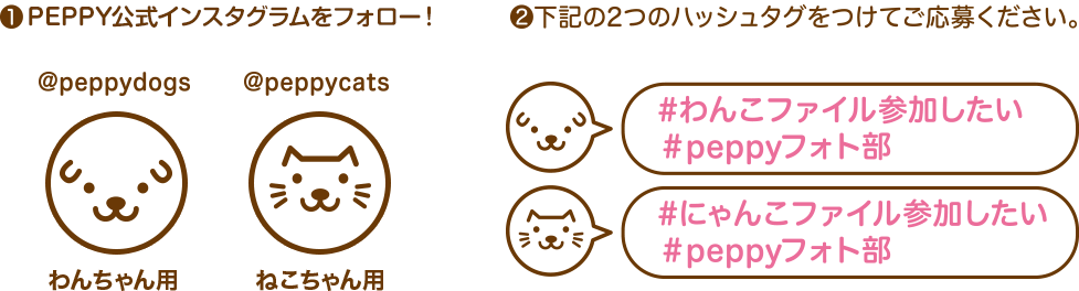 ①PEPPY公式インスタグラムをフォロー! @peppydogs わんちゃん用 @peppycats ねこちゃん用 ②下記の2つのハッシュタグをつけてご応募ください! #わんこファイルに参加したい #peppyフォト部 #にゃんこファイルに参加したい #peppyフォト部