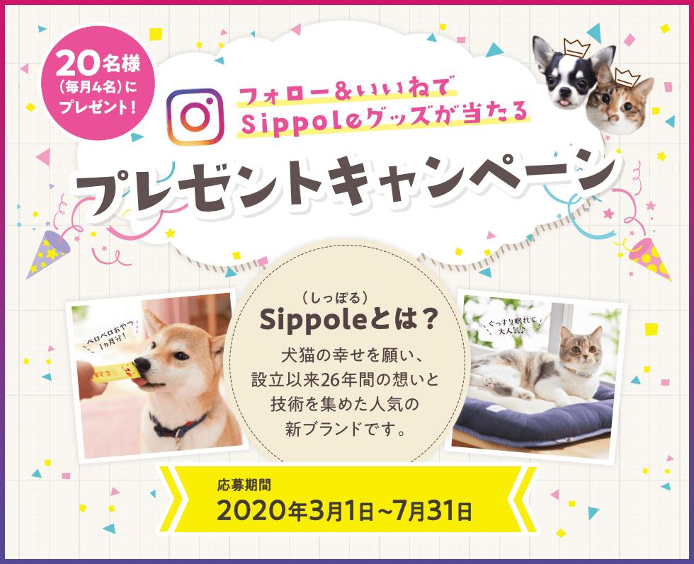 フォロー&いいねでsippoleグッズが当たるプレゼントキャンペーン 20名様(毎月4名)にプレゼント! (しっぽる)sippoleとは?犬猫の幸せを願い、設立26年間の想いと技術を集めた人気の新ブランドです。 応募期間2020年3月1日~7月31日