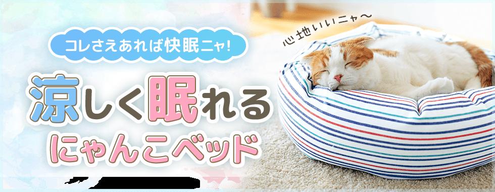 【猫ベッド特集】暑い夏でも快眠できる夏用猫ベッド