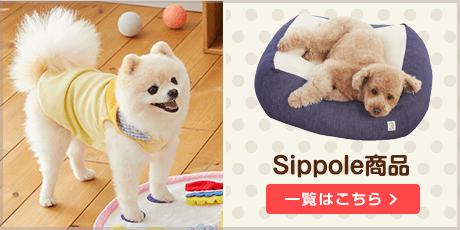 Sippole商品一覧はこちら