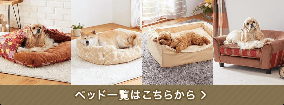 ベッド一覧はこちら