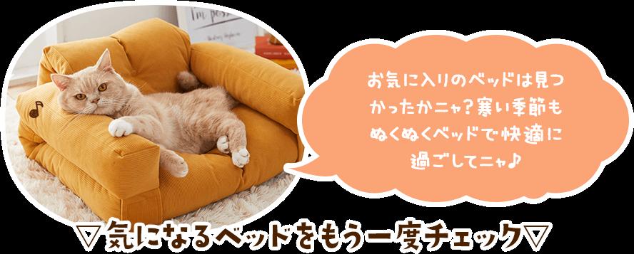 お気に入りのベッドは見つかったかニャ?寒い季節もぬくぬくベッドで快適なスヤスヤライフを過ごしてニャ♪