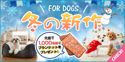 冬の新商品 犬