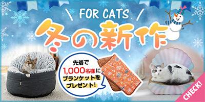 冬の新商品 猫