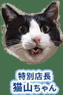 特別店長猫山ちゃん