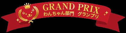 わんちゃん部門グランプリ
