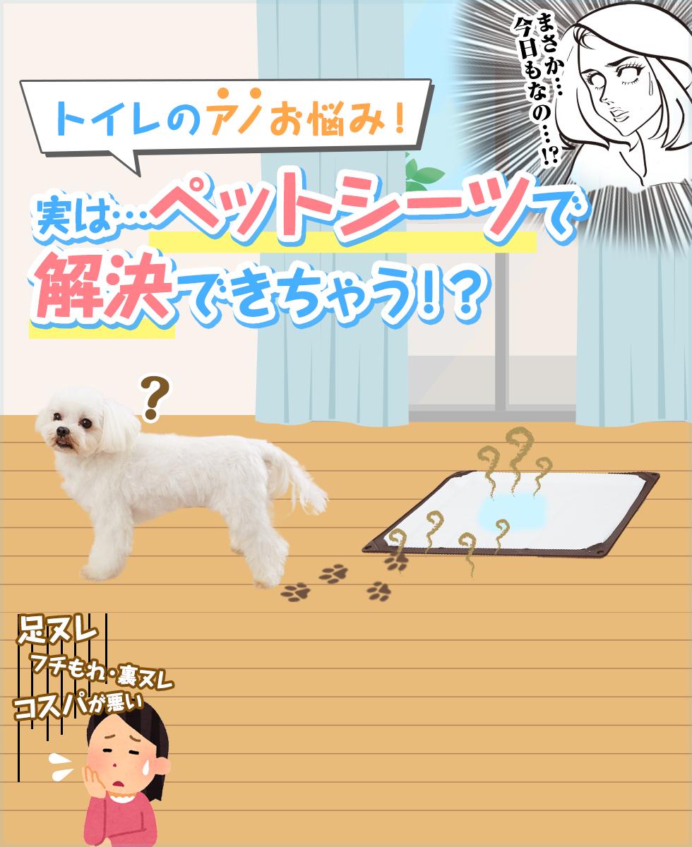 【犬用ペットシーツ特集】あのトイレのお悩みが、ペットシーツで解決できちゃう!?