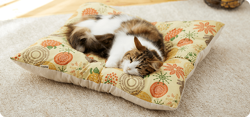 にゃんこが離れない日向ぼっこをしているようなぬくぽか感。まるまって眠るのが好きな子に。猫さま専用座布団。