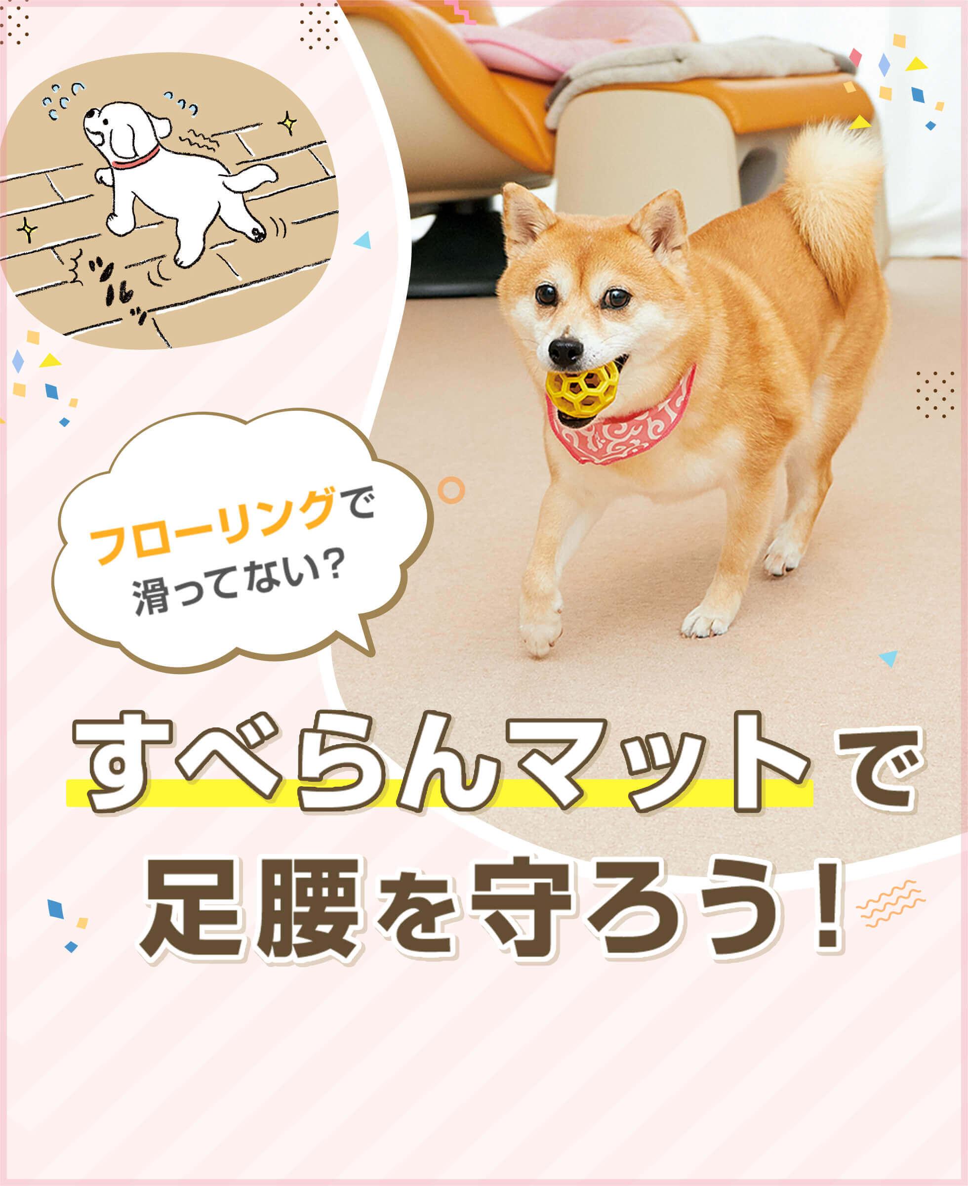 愛犬・愛猫のための『滑り止めマット特集』─おうち遊びで滑ってない?足腰を守るすべらんマット(ピタッと吸着マット)をご紹介!