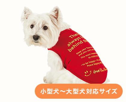 メッセージ適温Tシャツ