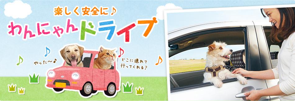犬・猫との旅行お出かけにおすすめカー用品