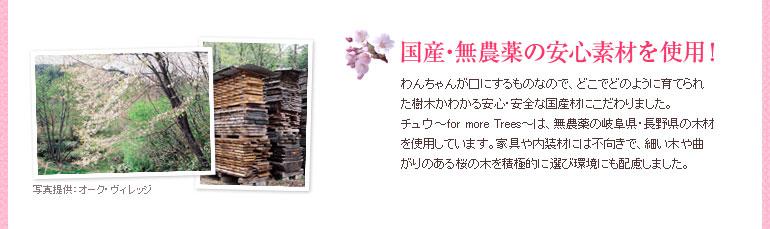 国産・無農薬の安心素材を使用!