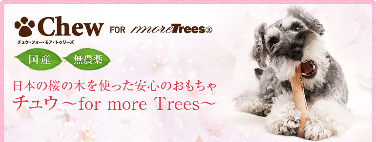日本の桜の木を使った安心のおもちゃ チュウ ~ for more Trees ~